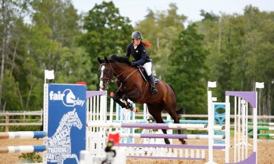 SHOW JUMPING HORSE