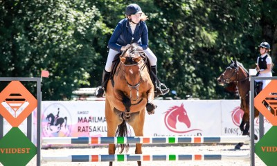 4a ESH ruun/ 4 y old showjumping gelding for sale