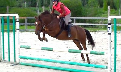 Müüa suure potensiaaliga  poni mära takistussõiduks