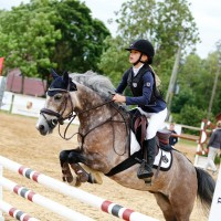 For sale very handsome and eye catching pony gelding - 8 y.o., 128 cm.
